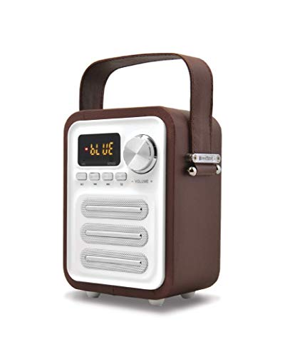 KNZ Retro Portable Bluetooth Speaker, Vintage Design, True Wireless Compliant, Built-in Subwoofer with Superior Bass, 10W, FM Radio, microSD Card and USB Drive Play, Remote Control Included (Brown)