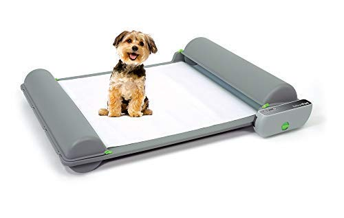 Diy Dog Training Pad
