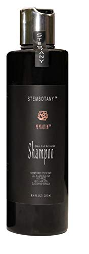 STEMBOTANY Stem Cell Shampoo for Thinning Hair Ultimate Hair Loss Shampoo for women and men : Frizz Control Natural DHT Blocker Shampoo with Caffeine Loaded with PEPTASTEM