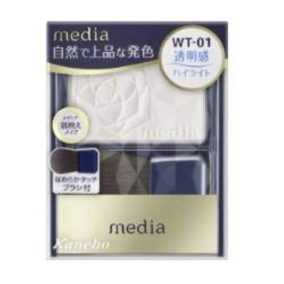 開発する計算する配当カネボウ メディア ブライトアップチークN WT01