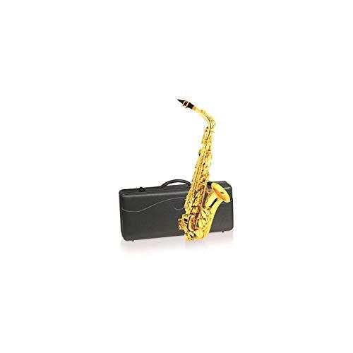 DELSON sassofono contralto in mi bemolle
