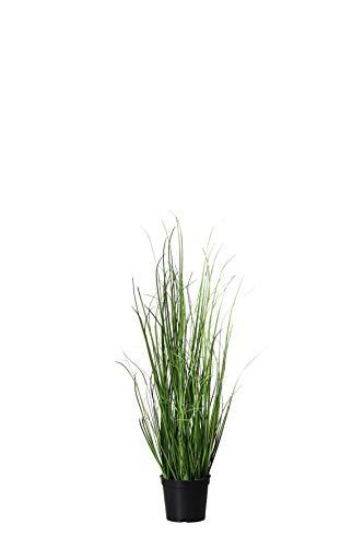 mucplants Dekogras im Topf - Künstlich & Naturgetreu - Höhe 60cm - Grasbüschel Ziergras Ufergras Kunstgras Grasbusch Schilfgras (Höhe: 60cm)