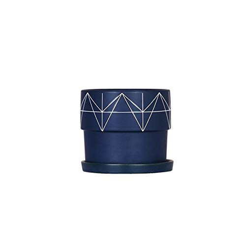 Vasi di Ceramica Semplici, Interni Ed Esterni Desktop Tiger Pirano Carnose Radicchio Verde Vasi Piante di Fiori, Vasi di Fiori con Vassoio (Color : Blue)