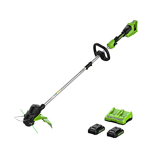 Greenworks 48V 15-inch String Trimmer - 2 x 24V 2Ah USB Batteries and 4A Dual Port Charger Included
