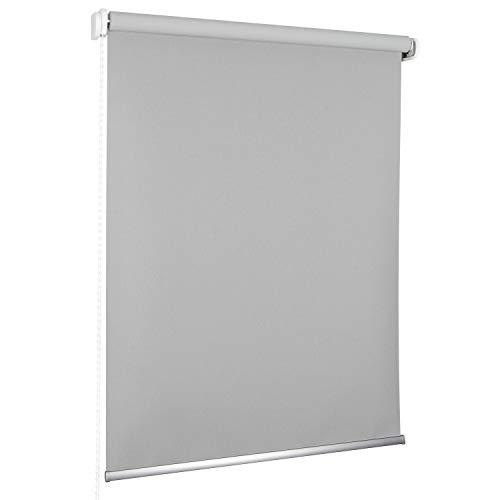 ROLLMAXXX Standard-Rollo Verdunkelungrollo Seitenzug Kettenzugrollo Tageslicht Sichtschutz (180 x 190 cm, Silver)