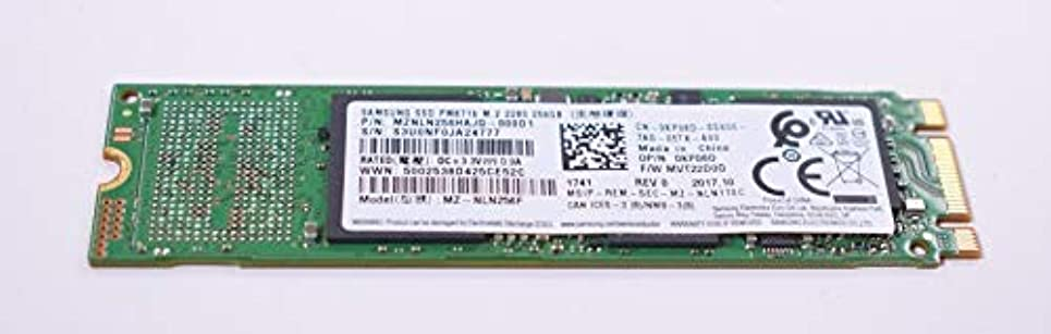 幸運あなたは医師FMS Compatible with MZNLN256HAJQ-000D1 Replacement for Samsung 256gb M.2 2280 Ssd Drive [並行輸入品]