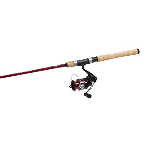 what is the best shimano rod and reel combo 2020
