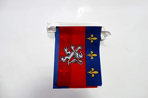 AZ FLAG Guirnalda 6 Metros 20 Banderas de la Provincia DE Lyonnais 21x15cm - Bandera DE Lyon - Lion 15 x 21 cm - BANDERINES