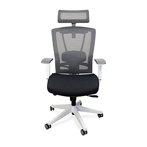 Autonomous Premium 2021 Ergonomic Office Chair: Lumbar Support, Adjustable Seat, Headrest, and Armrests, Executive Swivel, Responsive Mesh Back, Thick Cushion, 350 lbs Capacity, Medium, Black - White