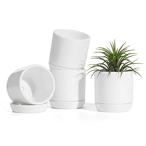 Succulent Planters Pots for Plants Indoor - 3.1 Inch Glazed Ceramic Small Plant Pot with Drainage Hole & Saucer Indoor for Home Decor(POTEY 055300, Plants NOT Included)