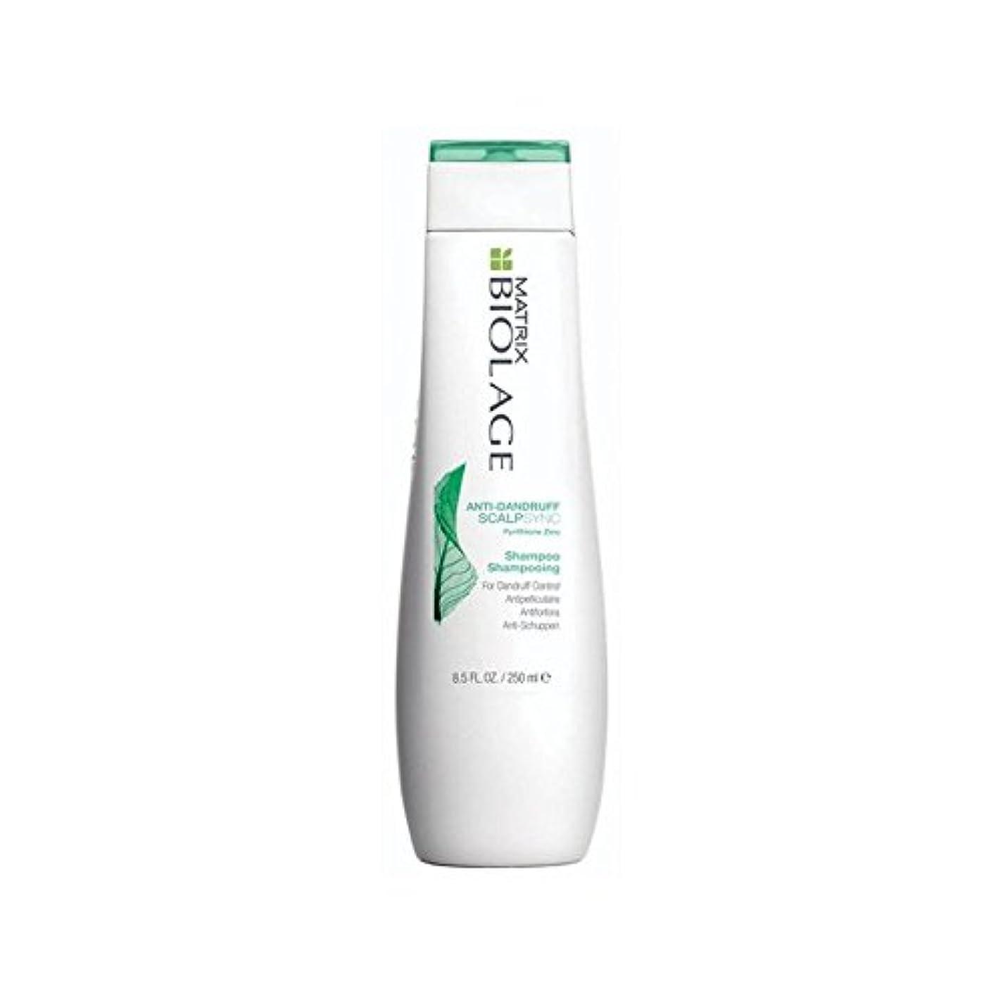 不透明なとげ腹Matrix Biolage Scalptherapie Antidandruff Shampoo (250ml) (Pack of 6) - マトリックスバイオレイジのフケ防止シャンプー(250ミリリットル) x6 [並行輸入品]