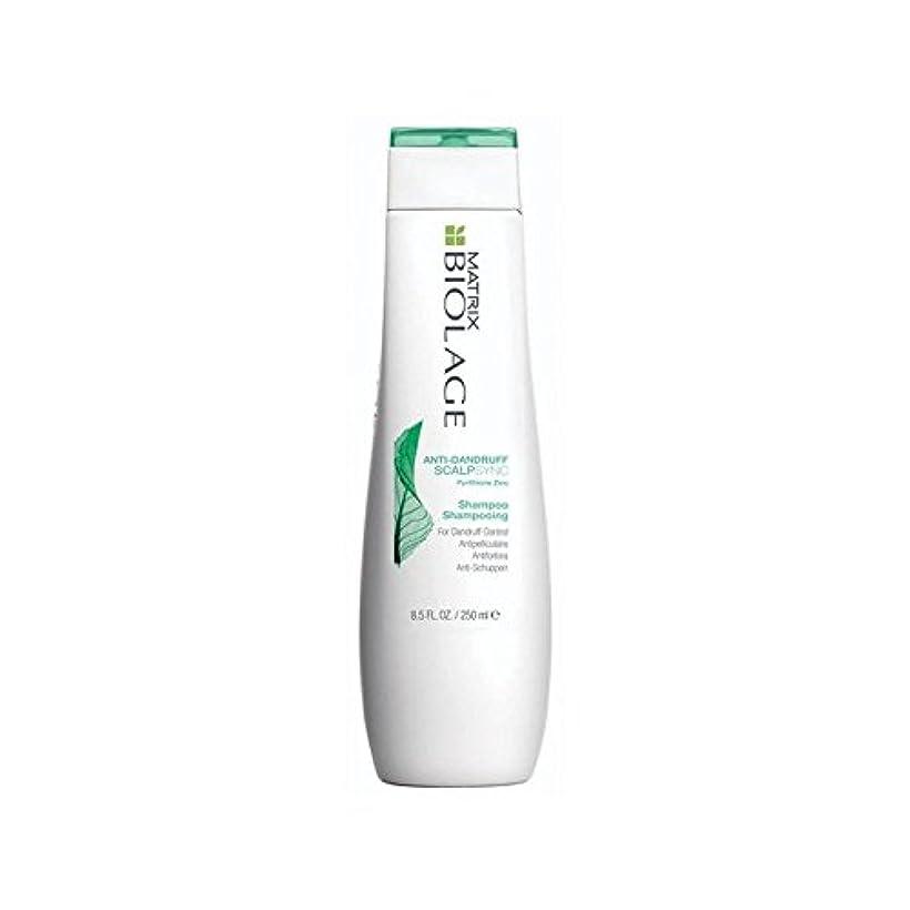 ほのめかす枝グレートバリアリーフMatrix Biolage Scalptherapie Antidandruff Shampoo (250ml) (Pack of 6) - マトリックスバイオレイジのフケ防止シャンプー(250ミリリットル) x6 [並行輸入品]
