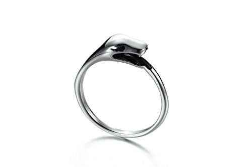 NA Anniversary Ring Stainless Steel Ring for Men Ouroboros
