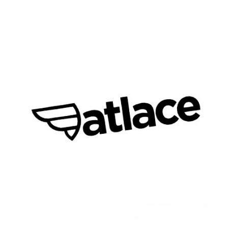 Decus fatlace // Sticker OEM JDM Style Aufkleber