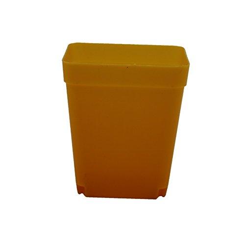 Adhere To Fly Lot de 10 pots de fleurs carrés en plastique pour plantes grasses colorées 6 cm