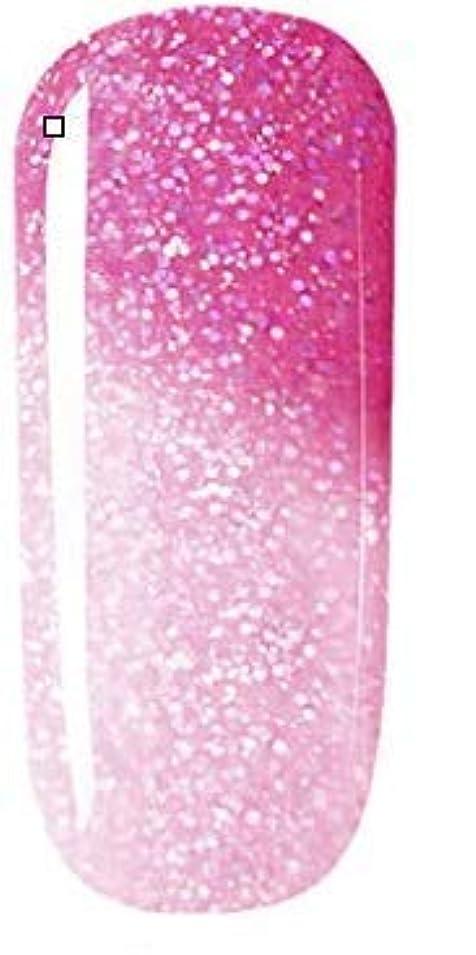 最大技術者接尾辞カラージェル 10色套装 完璧なセット 8ml キャットアイジェルキット カメレオンカラージェルセット ジェルネイルカラー UV/LED 适用 ネイルアートジェルで簡単に DIY 下の色で10ボトルを自由に選ぶことができる