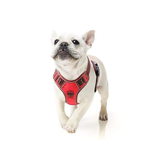 HEELE Hundegeschirr Hundegeschirr für Kleine Kein Ziehen Verstellbar Weiches Brustgeschirr Reflektierend Atmungsaktiv Leichtes Hundegeschirr für Kleine Hunde, Rot, S