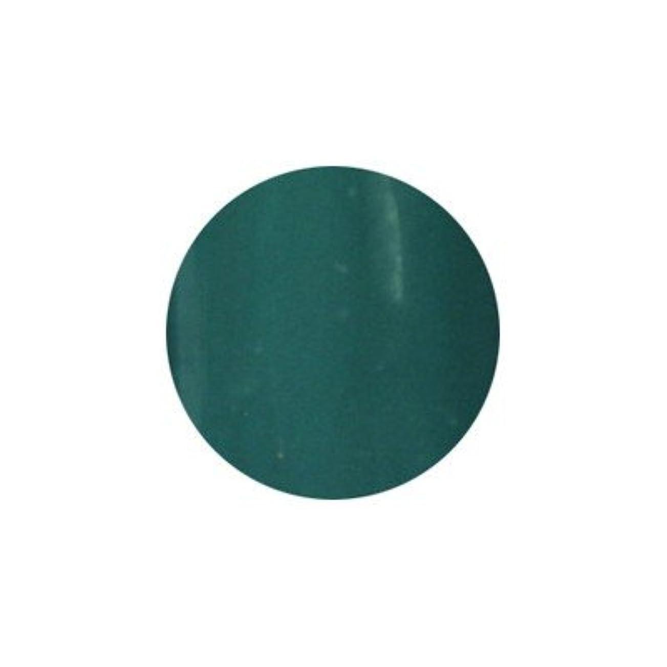 弾性無臭クスクスアイスジェル カラージェル PU-007 3g