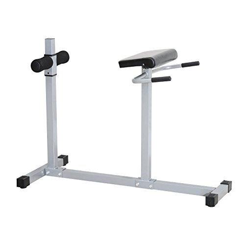 homcom Roman Chair Panca Romana per Fitness Addominali e Dorsali...