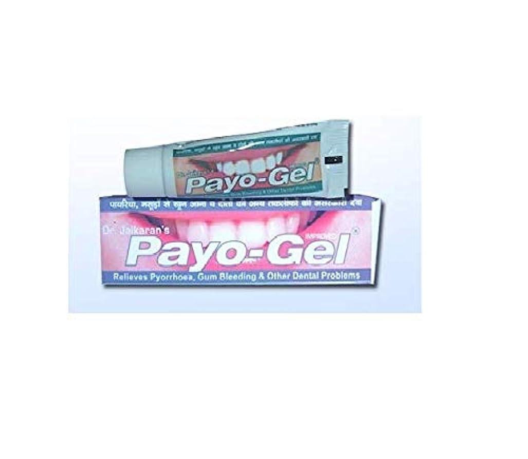 下線ピア副Herbal Payogel 20 grams Made with natural herbs for relief from bleeding gums Pyorrhea, ハーブ 歯茎の出血を防ぐための天然ハーブで作られています