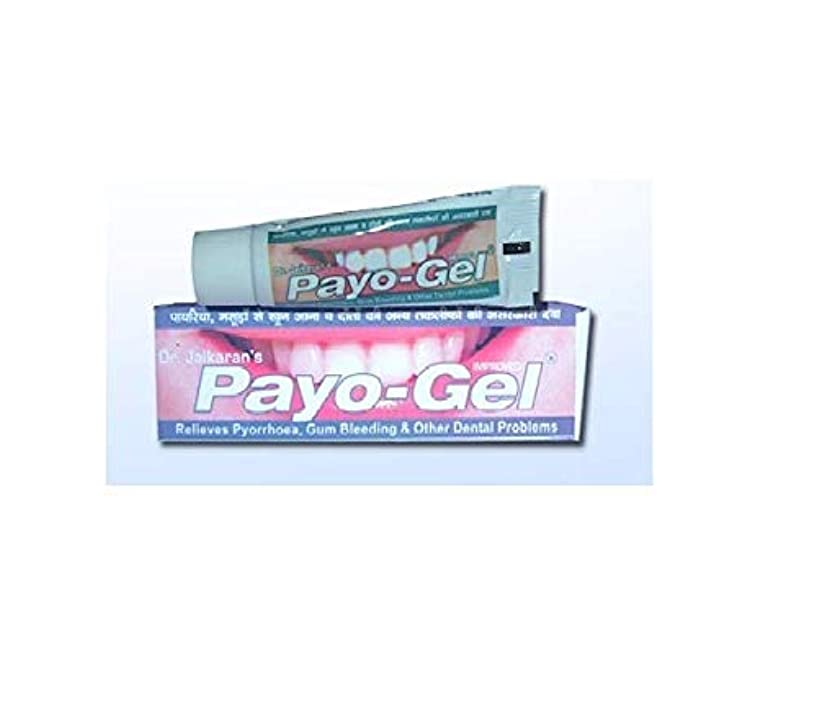 雪チャンスまたはどちらかHerbal Payogel 20 grams Made with natural herbs for relief from bleeding gums Pyorrhea, ハーブ 歯茎の出血を防ぐための天然ハーブで作られています
