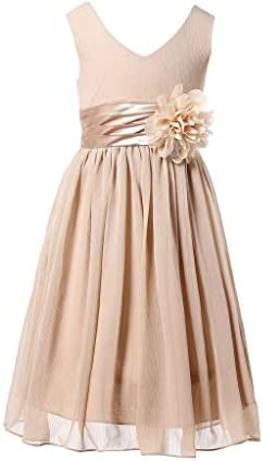Bow Dream Flower Girl Dress Junior Bridesmaids V Neckline Chiffon Champagne 7 product image
