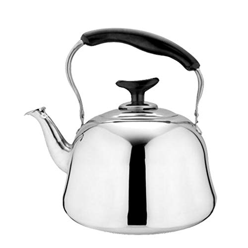 B Blesiya Edelstahl Wasserkessel Pfeifkessel Flötenkessel Teekessel - 2L