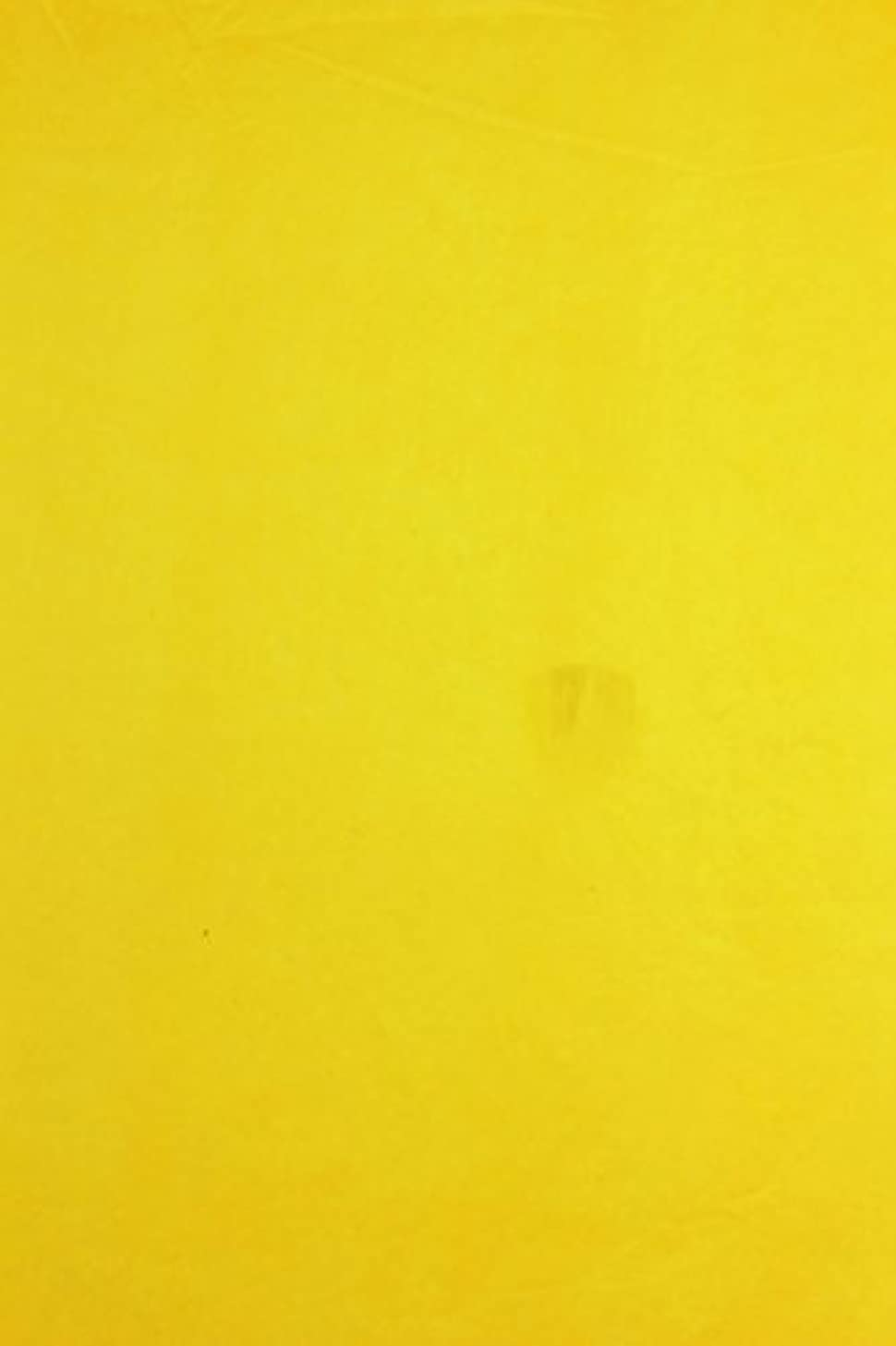 Clairefontaine Tissue Paper (8 Shts) 50Cmx75Cm Gold Yellow