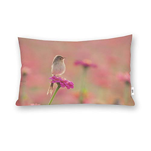 perfecone Home Improvement Cotton Pillowcase Double Cute Bird Design Sofa and car Pillow case 1 Pack 19.68 x 29.5 inches/50 cm x 75 cm