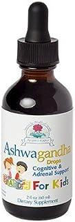 Ayush Herbs - Ashwagandha for Kids 2 fl oz by Ayush Herbs