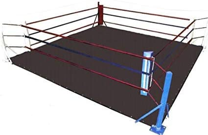 Black Color 20 Foot Professional Wrestling Boxing Ring Canvas Cover