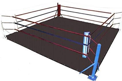 MMA Floor Ring Canvas Mat - for Wrestling,Boxing,Gymnastics & Martial Arts (Black Canvas, 12 X 12)