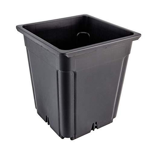 Greenvass 20 x Maceta para Cultivo hidropónico Cuadrada, 7 litros. 20 Unidades.