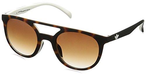 adidas Originals AOR003 Havana - Gafas de sol para mujer, color marrón y blanco