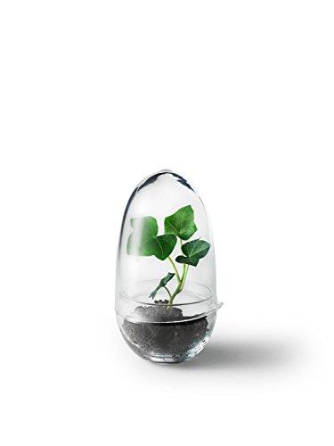 Design House Stockholm - Grow Gewächshaus - S - Caroline Wetterling - Blumentopf - Design