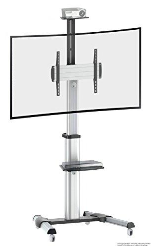 RICOO FS0444, TV-Ständer, Rollbar, Stand-Fuß, Neigbar, 40-75 Zoll (102–191cm), TV-Halterung mit Rollen, Höhenverstellbar, VESA 200x200-400x400, Silber