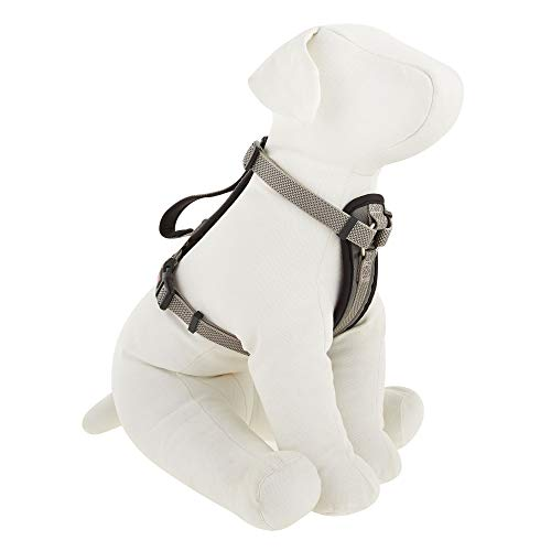 KONG Comfort Padded Chest Plate Dog Harness (Large, Grey)