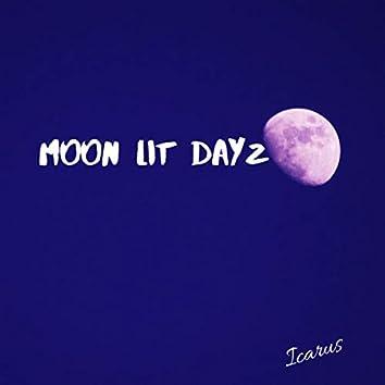 Moon Lit Dayz