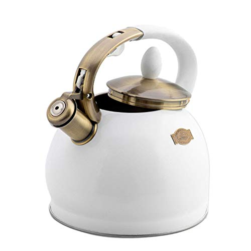 GoldCister Stainless Steel Tea Kettle for Stove Top 3.5L, Whistling Tea Kettle with Heat-Proof Hanle, Anit-Scald Tea Pot with Mirror Finish for All Stoves