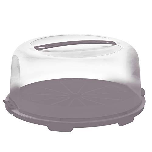 Rotho Tortenglocke hoch Fresh, Kunststoff (PP) BPA-frei, Mauve/transparent, 34.7 cm