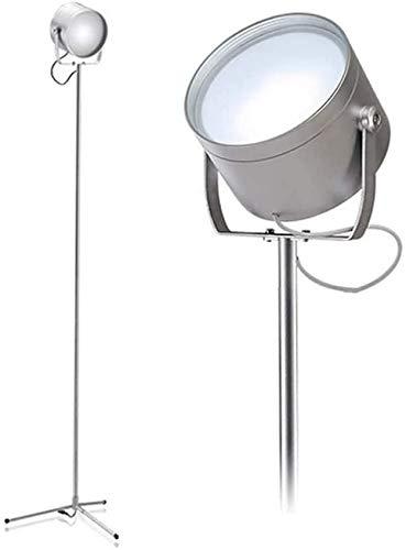 XXLYY Lámpara de pie LED, luz de pie Regulable, 2 temperaturas de Color, 4 Niveles de Brillo, táctil con Control Remoto, lámpara Alta Ajustable para Sala de Estar, Dormitorio, Oficina