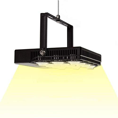SANSI Plantenlamp, 70 W, volledig spectrum, led-groeilamp voor kamerplanten, plantenlicht, groeilicht voor vetplanten, groeien en zaailingen, zonlicht, wit, IP66