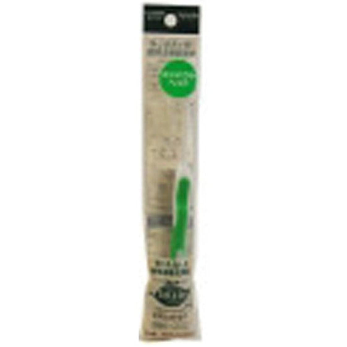 解体するさびた小康サレド ヘッド交換式歯ブラシ お試しセット コンパクトヘッド グリーン