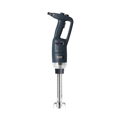 Frullatore professionale a mano da 500 W con asta di 500 mm di lunghezza, regolazione continua della velocità, mixer a immersione