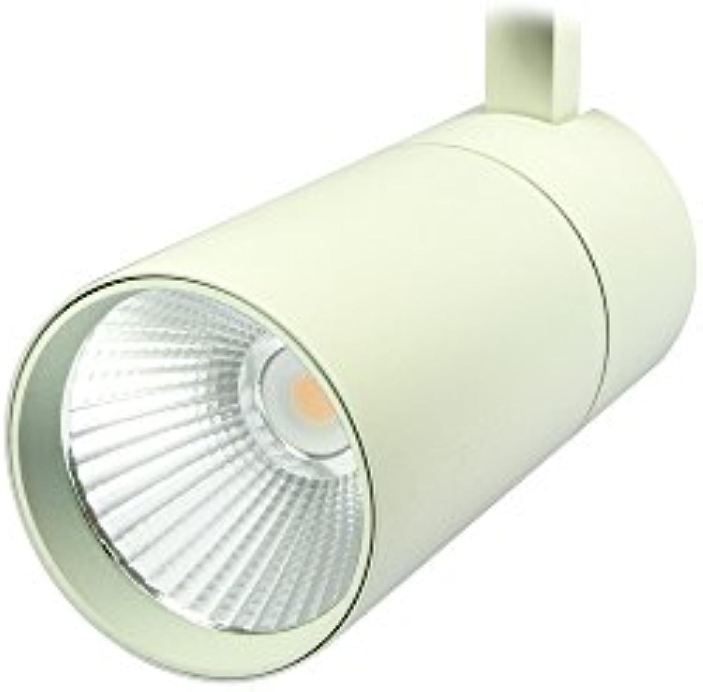 Synergy 21131766Innenraum geeignet für Verwendung Innen Rail Lighting Spot 30W A + Wei