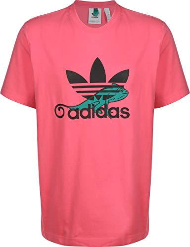 adidas Herren T-Shirt T Shirt Logo, super pink, XL, FM3695