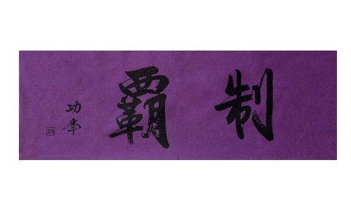 剣道 手拭 面タオル 面下 手ぬぐい 制覇 (紫)