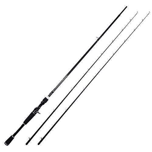 KastKing Perigee II Fishing Rods, Casting Rod Twin-tip...