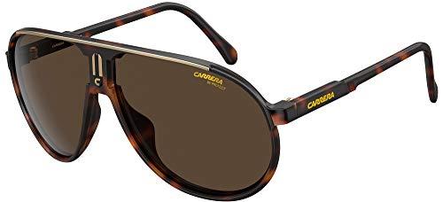 Carrera Gafas de Sol CHAMPION Dark Havana/Brown 62/12/125 hombre