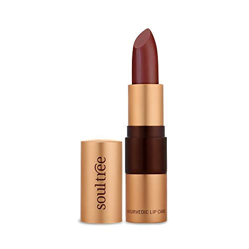 SOULTREE Natural and Organic Lipstick, with Ayurveda Ingredients, 4.5g (Java Brown)